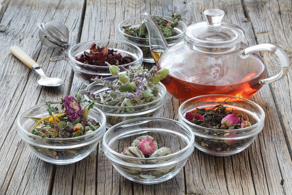 La ayuda de las plantas medicinales en los trastornos digestivos